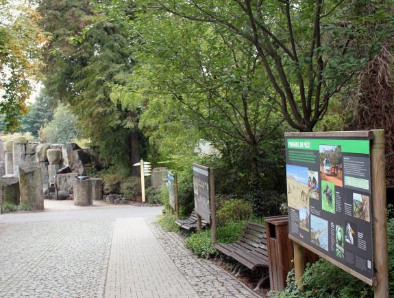 dierentuin-praag