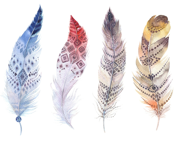 feathers-