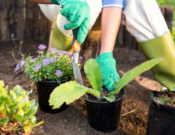 hoe-tuin-zomerklaar-maken