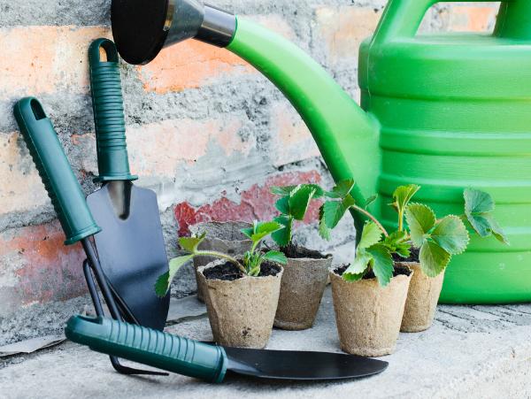 tuin-zomerklaar-maken-tips