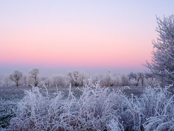 winter-buiten-tuin-genieten