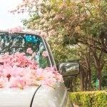 Eerste auto kopen: waar moet je op letten?